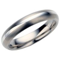 Ladies titanium wedding ring